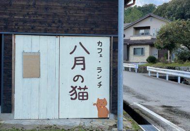 カフェ・ランチ 八月の猫